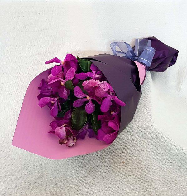 Purple Hooter - Vanda Orchids